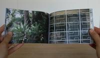 16_12-month-detail-succulent-iron-window-small.jpg